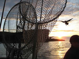 Fishing - Sea Angling around Caithness and Sutherland